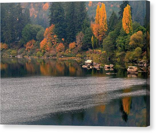 Autumn Along The Umpqua Canvas Print