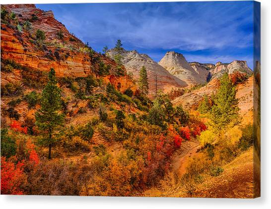 Autumn Arroyo Canvas Print