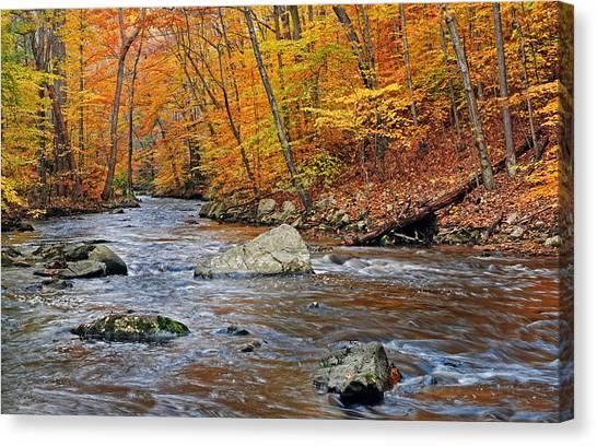 Autumn At The Black River Canvas Print
