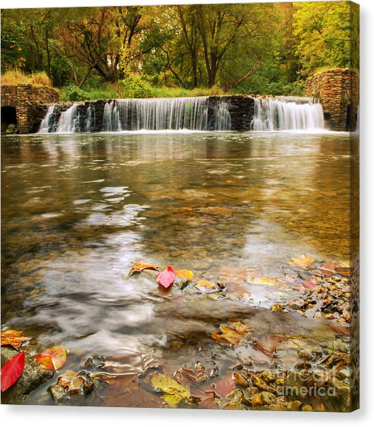 Autumn At Valley Creek Canvas Print