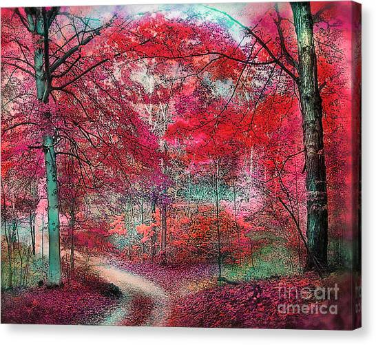 Autumn Beeches Canvas Print