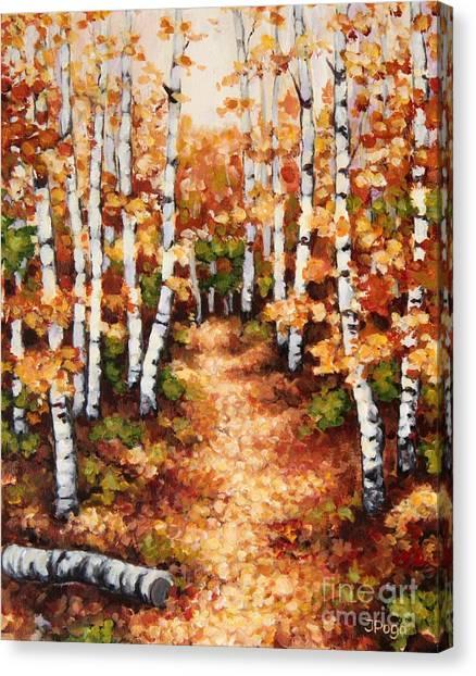 Autumn Birch Trail Canvas Print