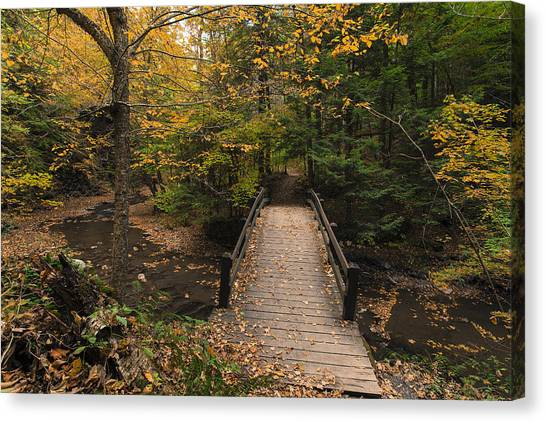 Autumn Bridges. Canvas Print