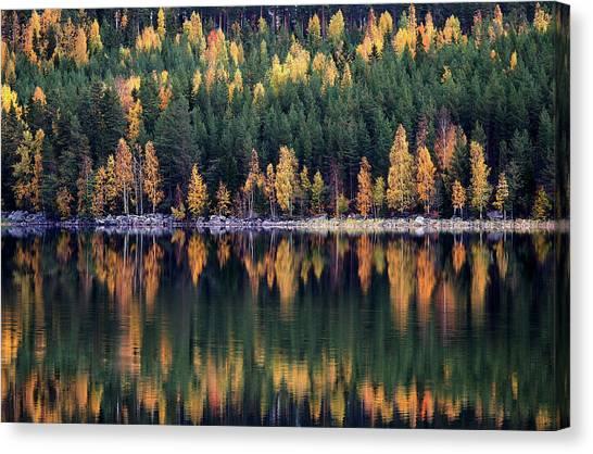 Sweden Canvas Print - Autumn by Bror Johansson