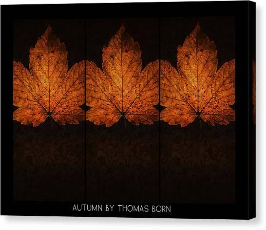 Autumn By Thomas Born Canvas Print