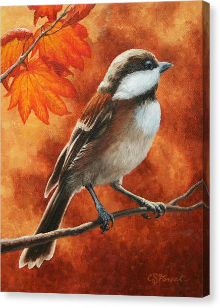 Chickadees Canvas Print - Autumn Chickadee by Crista Forest