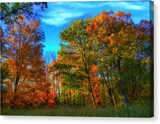 Autumn Clearing Canvas Print