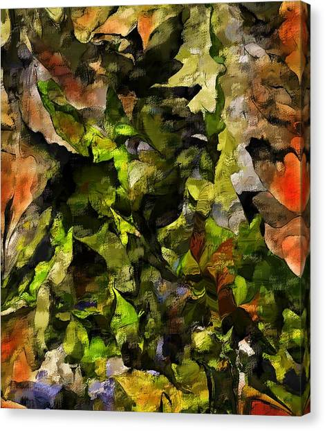 Canvas Print - Autumn Color Abstract by David Lane