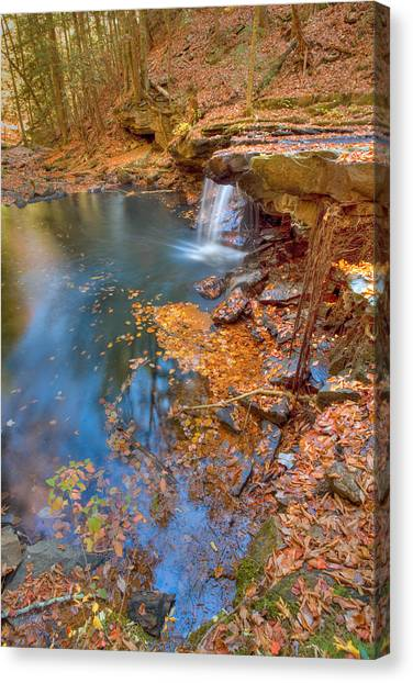 Autumn Color In Pond Canvas Print