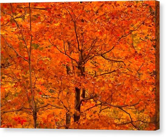 Autumn Color Splash Canvas Print