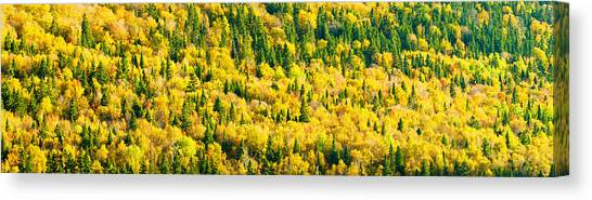 New Brunswick Canvas Print - Autumn Colors At Appalachian Mountains by Panoramic Images