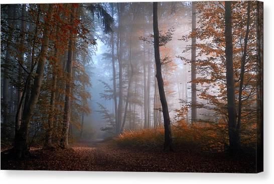 Autumn Leaves Canvas Print - Autumn Colors by Norbert Maier