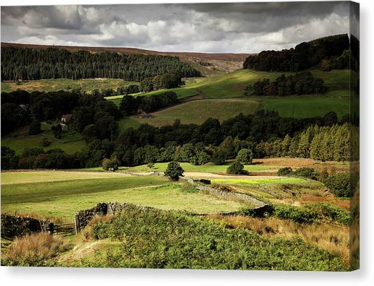 Autumn Colours In The North Yorkshire Canvas Print by Dan Kitwood