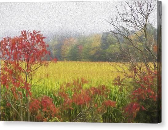 Autumn Cornfield II Canvas Print by Tom Singleton