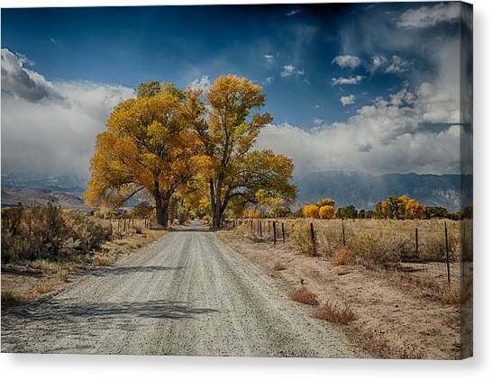 Dirt Road Canvas Print - Autumn Country Road by Cat Connor