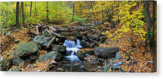 Autumn Creek Panorama With Yellow Maple Trees Canvas Print