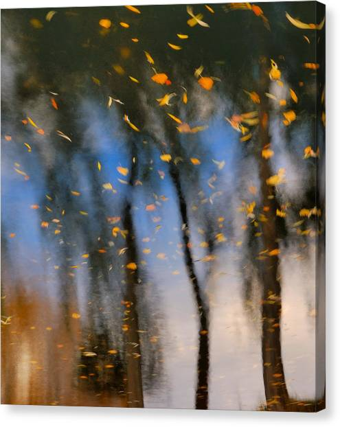 Autumn Daze - Abstract Reflection Canvas Print