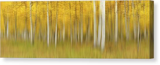 Autumn Dream Canvas Print by Mei Xu