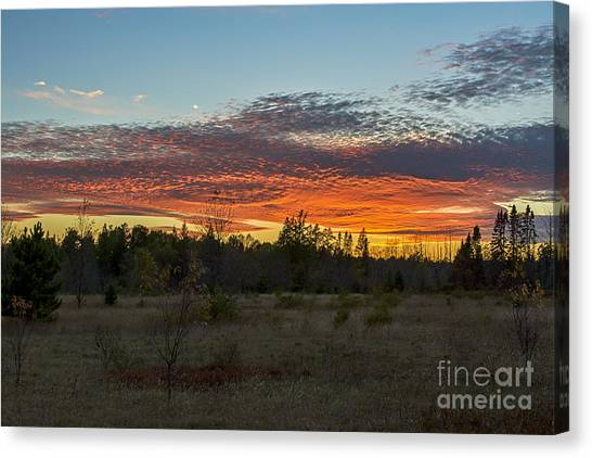 Autumn Evening Canvas Print