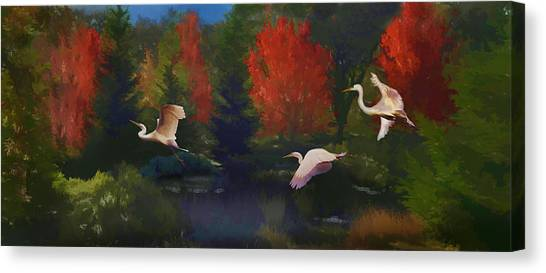 Canvas Print featuring the photograph Autumn Flight by Melinda Hughes-Berland