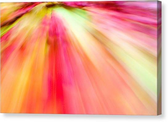 Canvas Print featuring the photograph Autumn Foliage 10 by Bernhart Hochleitner