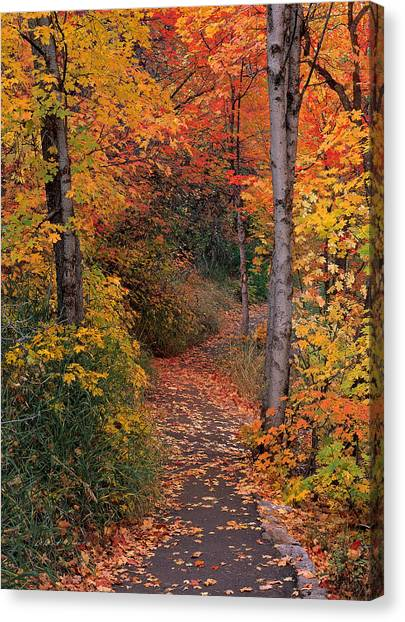 Autumn Foot Path Canvas Print by Leland D Howard
