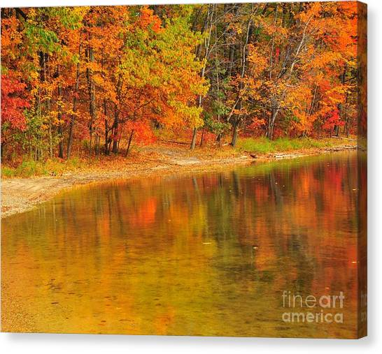 Autumn Forest Reflection Canvas Print