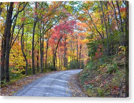 Autumn Forest Trail Canvas Print by Bob Jackson
