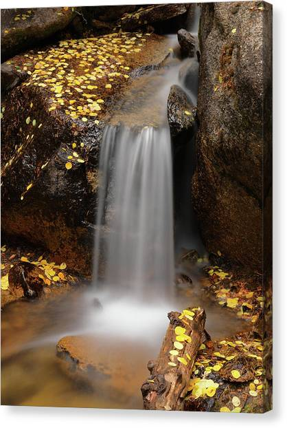 Idaho Canvas Print - Autumn Gold And Waterfall by Leland D Howard