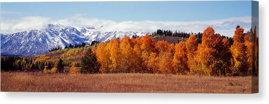 Wy Canvas Print - Autumn Grand Teton National Park Wy by Panoramic Images