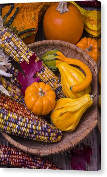 Indian Corn Canvas Print - Autumn Harvest Still Life by Garry Gay