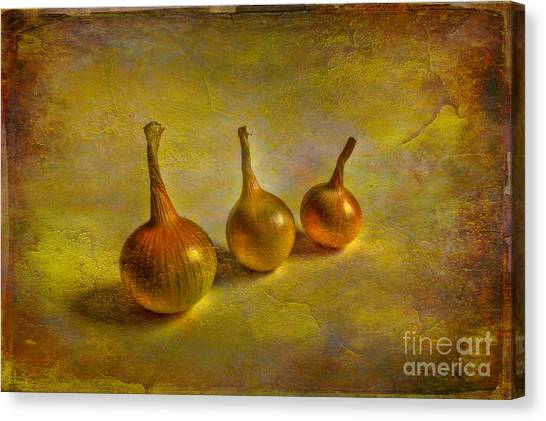 Vegetables Canvas Print - Autumn Harvest by Veikko Suikkanen