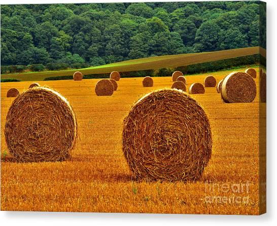 Autumn Hay Bales Canvas Print