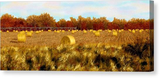 Autumn Hay Canvas Print