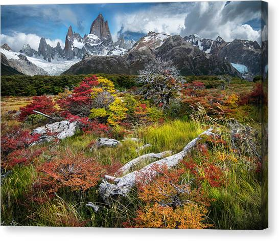 Argentinian Canvas Print - Autumn by Ignacio Palacios