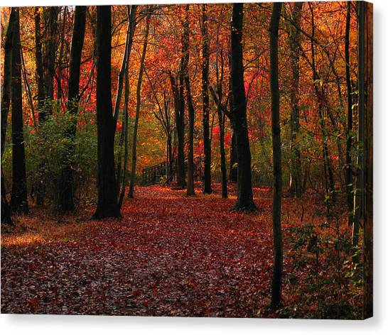 Autumn IIi Canvas Print