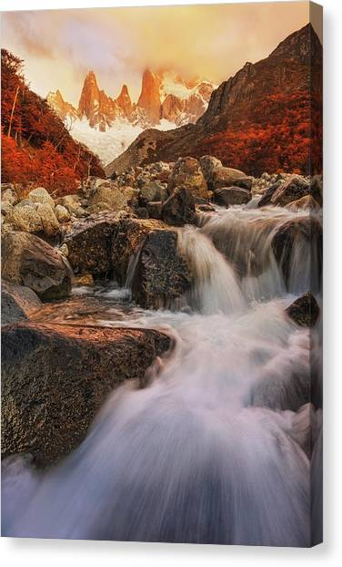 Argentinian Canvas Print - Autumn Impression by Yan Zhang