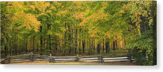 Border Wall Canvas Print - Autumn In Door County by Adam Romanowicz