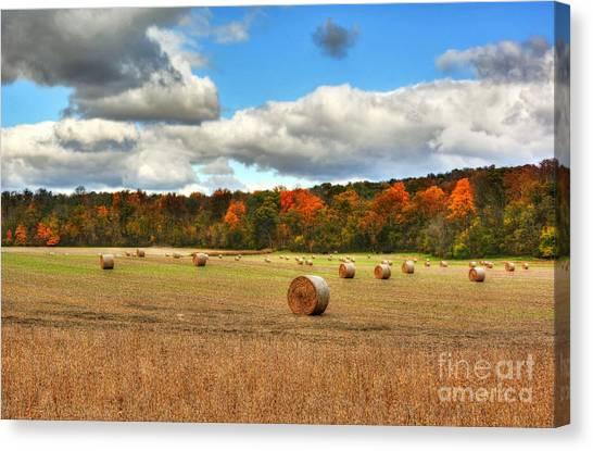 Indiana Autumn Canvas Print - Autumn In Indiana by Mel Steinhauer