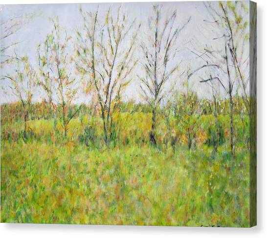 Autumn In Kentucky Canvas Print