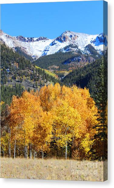 Autumn In Lake City Canvas Print