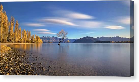 Autumn In Lake Wanaka Canvas Print by Hua Zhu