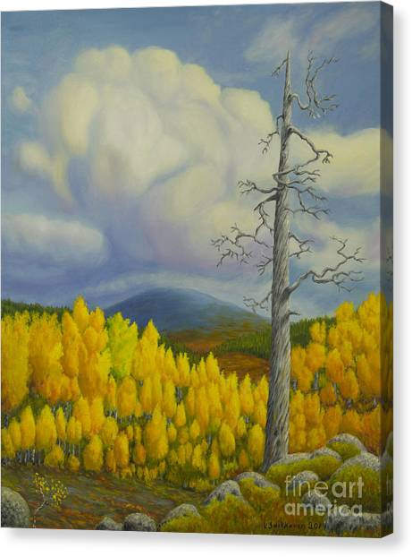 Mossy Forest Canvas Print - Autumn In Lapland by Veikko Suikkanen
