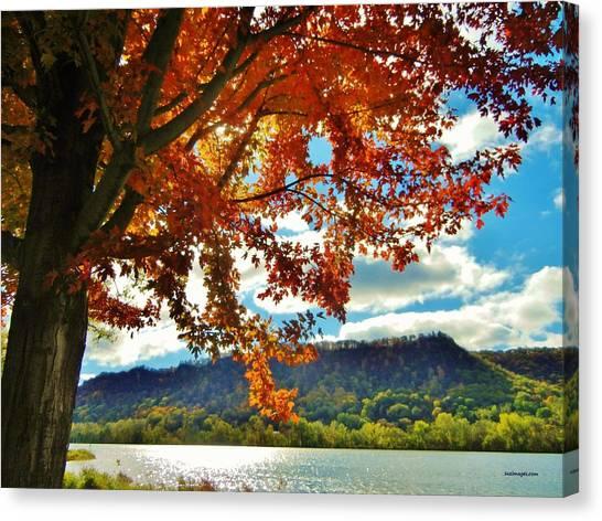 Autumn In Minnesota Canvas Print