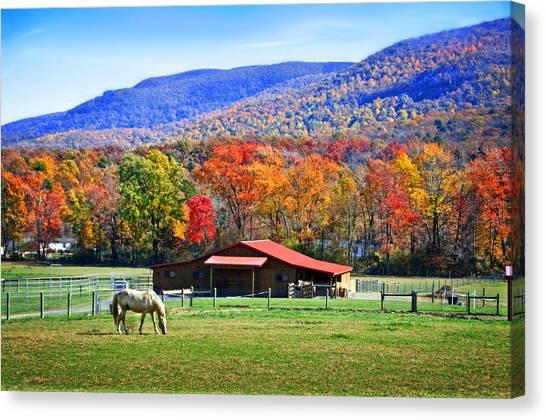 Autumn In Rural Virginia  Canvas Print