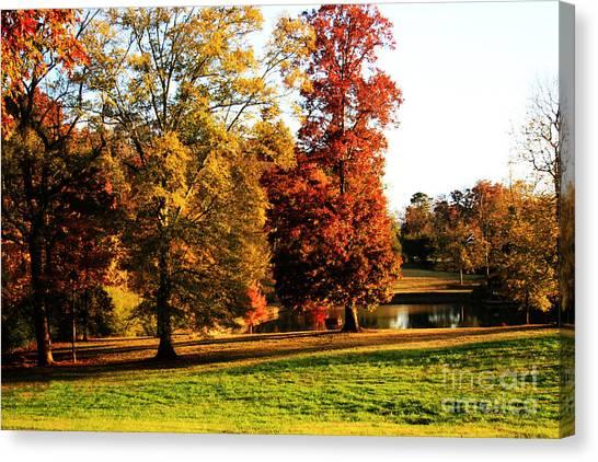Autumn In The Air... Canvas Print by Jinx Farmer