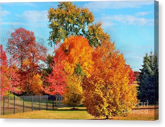 Autumn In The Air Canvas Print