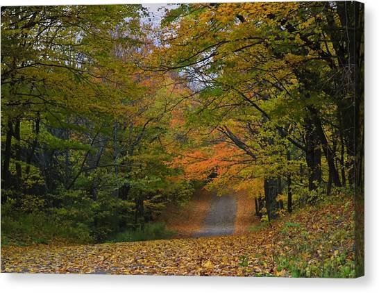 Autumn In The Caledon Hills Canvas Print