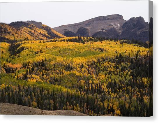 Autumn In The Colorado Mountains Canvas Print by Greg Ochocki