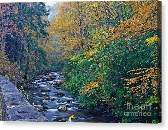 Autumn In The Great Smoky Mountains V Canvas Print
